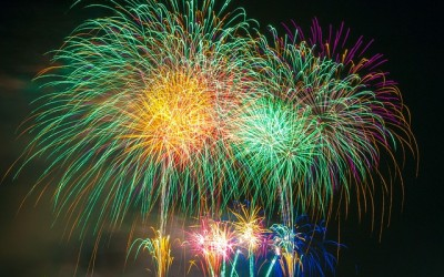 Fireworks – fun for us but not our furry friends